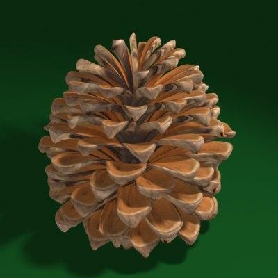 pinecone03_001.jpg