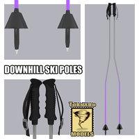 downhill ski poles giant 3d max