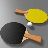 table tennis paddle 3d max