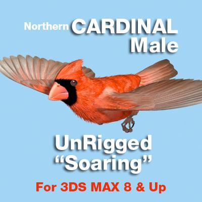Cardinal-SOAR-COVER-4X.jpg