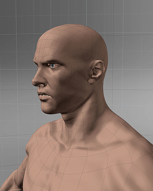 002_human_body_details.jpg