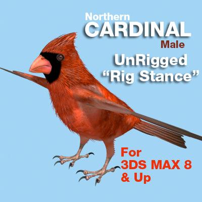 Cardinal-RigStance-COVER-4X.jpg