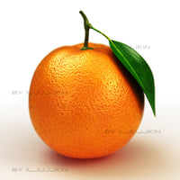 maya orange fruit