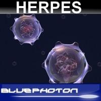herpes virus max