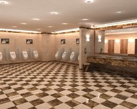3d model 5 star toilet interior