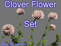 3d model set clover flowers