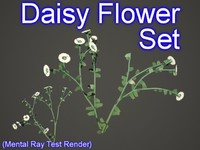 3ds max set daisy flowers