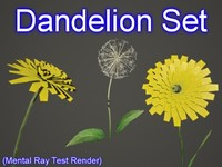 set dandelion 3d model