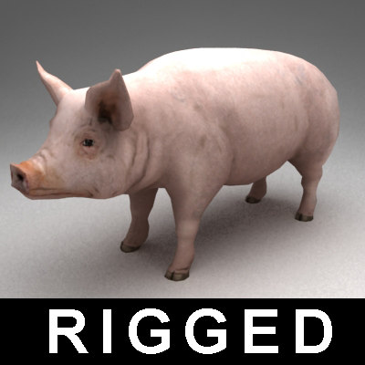 rigged pig 3ds - Pig rigged... by Kvakling