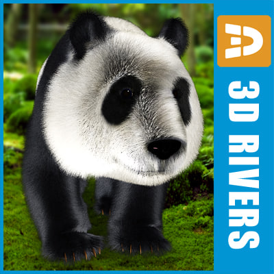 giant-panda_logo.jpg