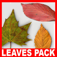 c4d fallen leaves pack
