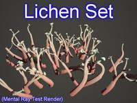 set lichen 3d 3ds