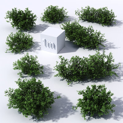 3dsmax holly shrubs collections - Holly shrubs collection 1... by motionfront