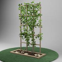 3d plant garden