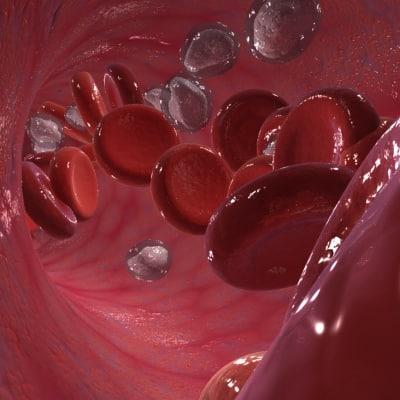blood004.jpg