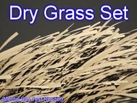 3d model set dry grasses