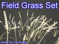 Field Grass Set 001