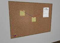 Cork Board and Pins