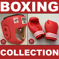 training boxing helmet gloves 3d max