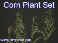 3ds set corn plants