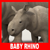 Baby Rhino (High and Low Poly)