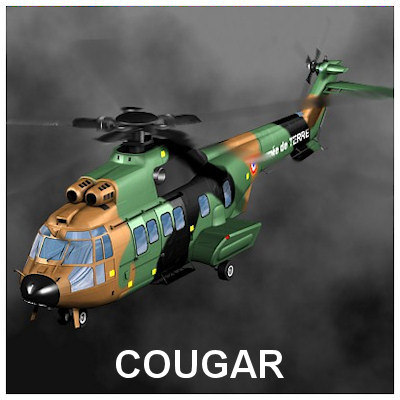 Cougar_01_T.jpg