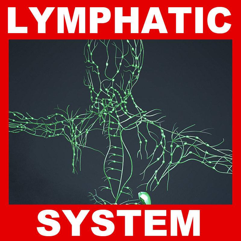Lymphatic_System.jpg