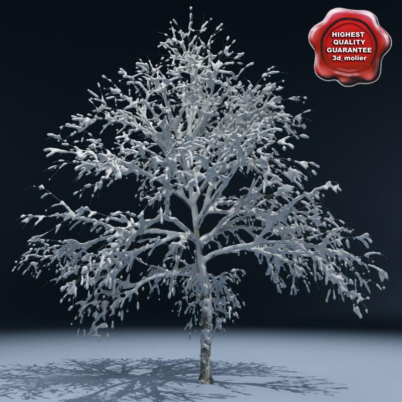 Winter_Tree_V1_00.jpg
