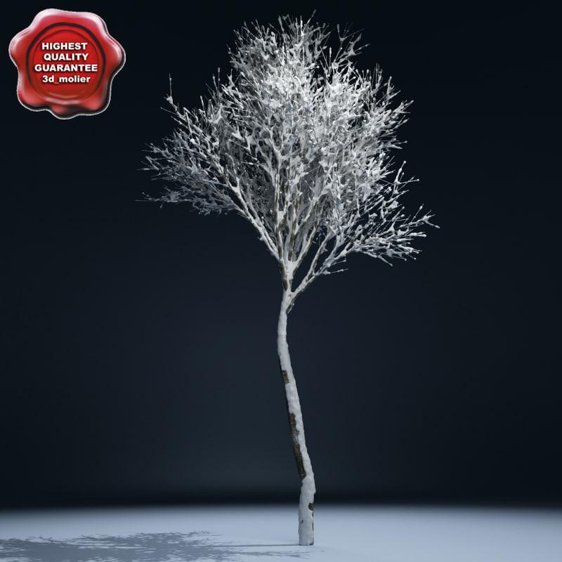 Winter_Tree_V2_00.jpg