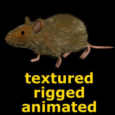 rat_thumb.jpg
