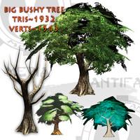 Big Bushy Tree