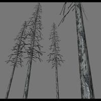 3d model trees b3d realm