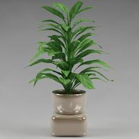 3d plants flowerpot