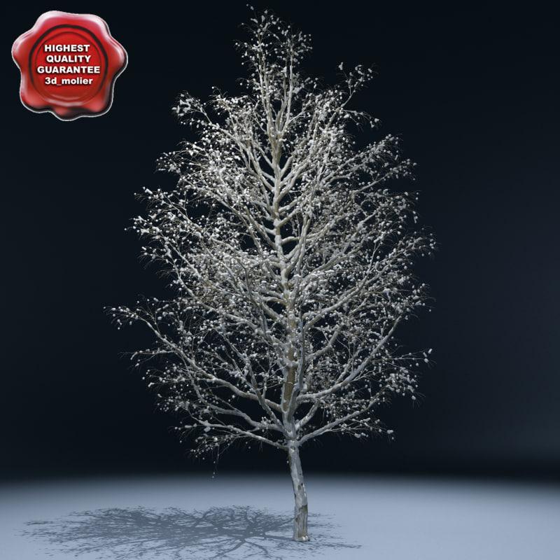 Winter_Tree_V3_00.jpg