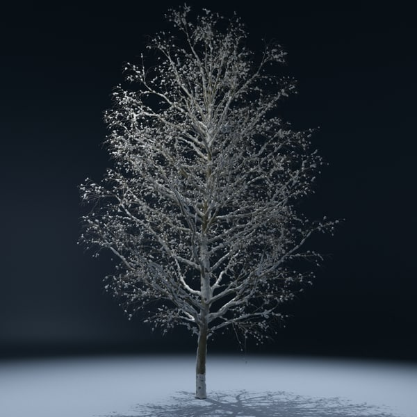 winter tree v3 3d lwo - Winter Tree V3... by 3d_molier