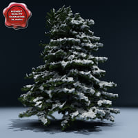 winter tree v6 3d model
