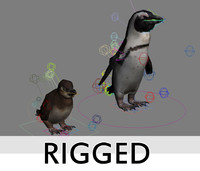 Penguins rigged