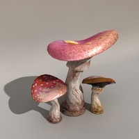 3d mushrooms toadstools