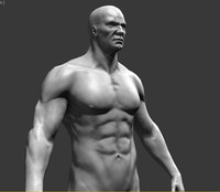 bodybuilder body 3d max