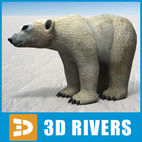 Polar bear by 3DRivers