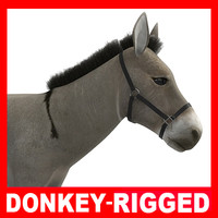 donkey rigged 3d model