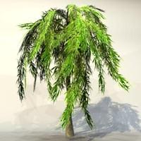 Tree_n_01.zip