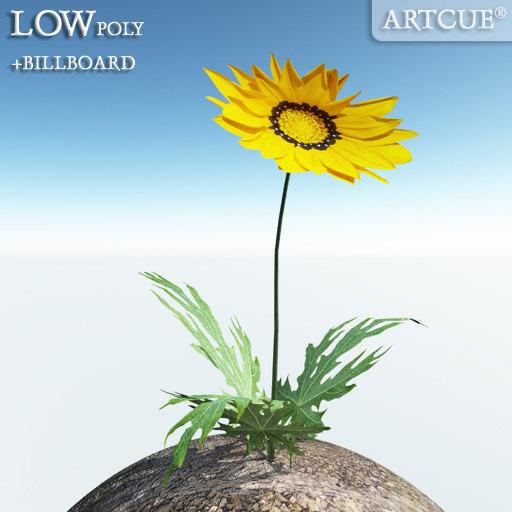 flower_002_main.jpg
