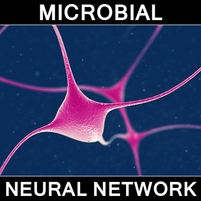 microscopic neural network 3d max - neural_network_1.max... by Apex Visuals