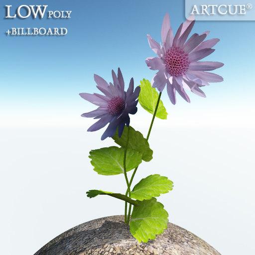 flower_007_main.jpg