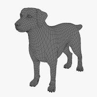 3d dog base mesh model