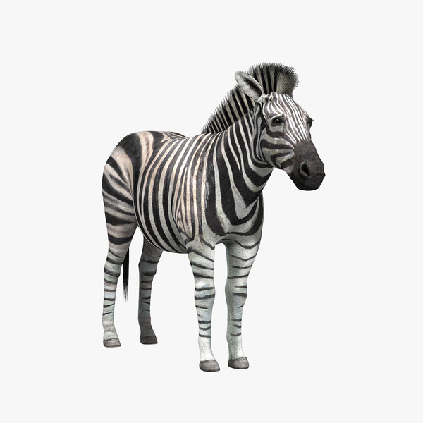 african animals vol 1 3d model - African Animals Vol.1... by Massimo Righi