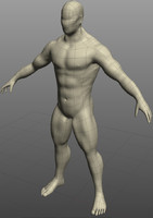 Male Muscled Figure