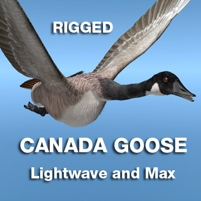 CGoose-ALL-Rigged-RigCOVER.jpg