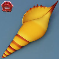 3d seashell modelled model